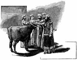 An unidentified artist's depiction of part of the ordination ritual for Aaron and his sons, as described in Leviticus 8:14